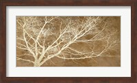 Dream Tree Fine Art Print