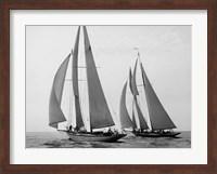 Sailboats Race during Yacht Club Cruise Fine Art Print