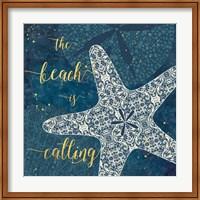 Coastal Lace II Fine Art Print
