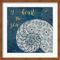 Coastal Lace IV Fine Art Print