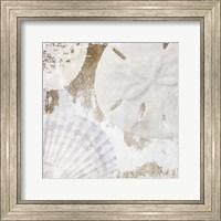 White Shells I Fine Art Print