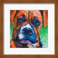 Puppy Dog Eyes II Fine Art Print