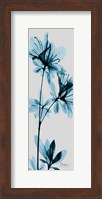 Blue Azalea Fine Art Print