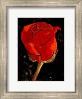 Golden Rose Fine Art Print