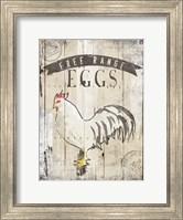 Free Range Eggs Fine Art Print