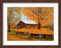 Pumpkinville, Western Ny Fine Art Print