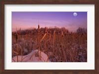 Moon Over Frozen Fields Fine Art Print