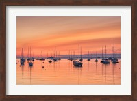 Pastel Harbor Fine Art Print