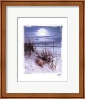 Moonlight Fine Art Print