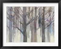 Forest Light Fine Art Print