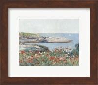Poppies, Isles of Shoals, 1891 Fine Art Print
