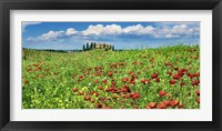 Farm House with Cypresses and Poppies, Tuscany, Italy Fine Art Print