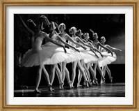 Swan Lake Ballet Fine Art Print