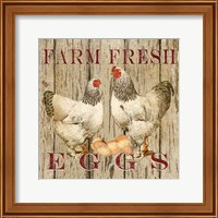 Farm Fresh Eggs II Fine Art Print