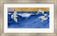 Seagulls with Gold Sky Fine Art Print