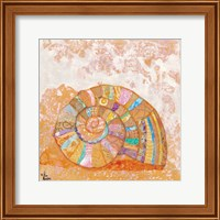 Spiral Seashell Fine Art Print