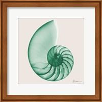 Jade Water Snail Fine Art Print