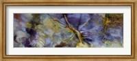 Purple Jasper Fine Art Print