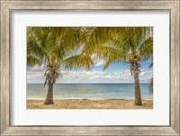 Twin Palms Fine Art Print