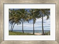 Beach Palms Fine Art Print