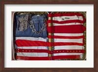 American Suitcase Fine Art Print