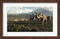 Columbian Mammoths And Bison Roam The Ancient Plains Of North America Fine Art Print