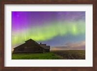 Purple Aurora over an old barn, Alberta, Canada Fine Art Print