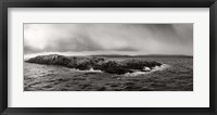 Island of arctic birds and sea lions, Beagle Channel, Patagonia, Argentina Fine Art Print