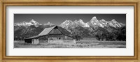 Old barn on a landscape, Grand Teton National Park, Wyoming Fine Art Print