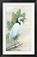 Standing Egret I Fine Art Print