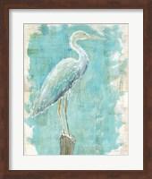 Coastal Egret I Fine Art Print