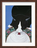 Lapping Milk From An Oriental Plate Fine Art Print