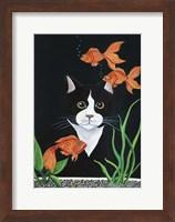Oscar Mesmerized Fine Art Print
