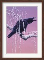 Raven Fine Art Print
