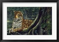Jaguar By The River Fine Art Print