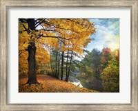 Golden Carpet Fine Art Print