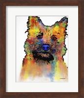 Cairn Terrier 1 Fine Art Print