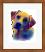 Labrador Yellow 1 Fine Art Print