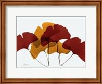 Gingko Fall Fine Art Print