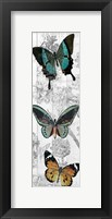 Butterflies Are Free 2 Fine Art Print
