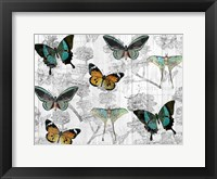 Butterfly Dreams Fine Art Print
