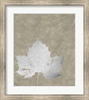 Silver Foil Leaf II on Lichen Wash Fine Art Print