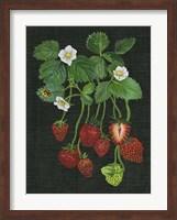 Strawberry Fields II Fine Art Print
