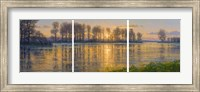 Reflections Triptych Fine Art Print