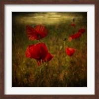 Fields of Red II Fine Art Print