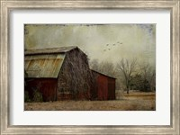 the Red Barn Fine Art Print