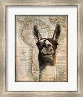 South America Llama Map Fine Art Print