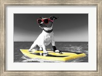 Pop of Color Surf's Up Dog Fine Art Print