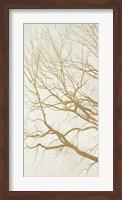 Golden Tree I Fine Art Print