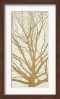 Golden Tree II Fine Art Print